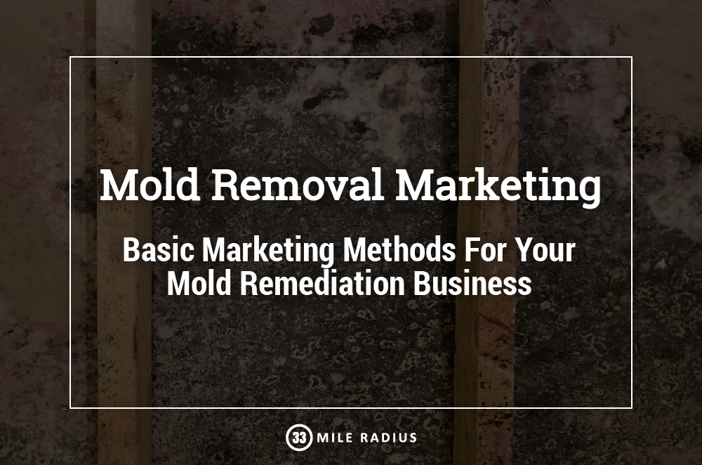 Learn the Basics of Marketing Your Mold Removal Business