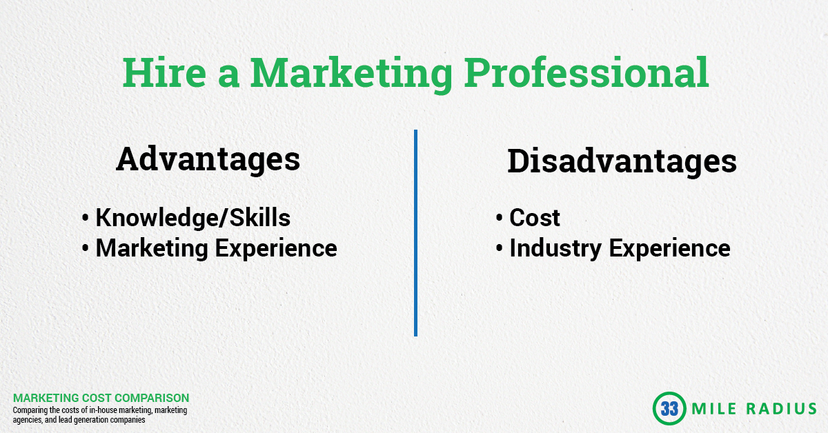 The Cost of Mold Removal Leads: The pros and cons of hiring a marketing professional